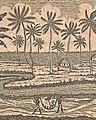 Nicolai Josephi Jacquin Selectarum stirpium Americanarum historia Seite 1 Ausschnitt.jpg