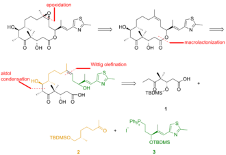 Epothilone - Figure 1