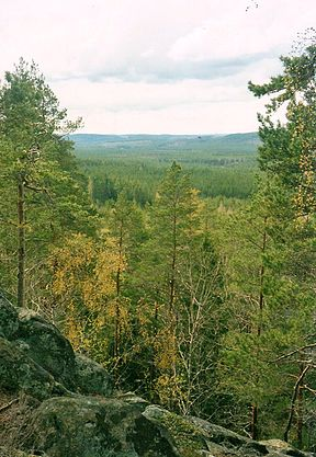 Norra Kvill Nationalpark.jpg
