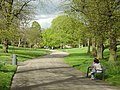 Nottingham Arboretum, the main walk - geograph.org.uk - 790116.jpg