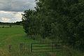 Nutzungskonflikt Naturschutzgebiet Funneaue Nordkirchen IMG 2874.jpg