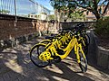 Ofo bikes near St Peter's station December 2017.jpg