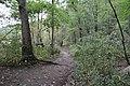 Ohiopyle State Park River Trail - panoramio (5).jpg