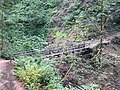 Oneonta Gorge Bridge.jpg