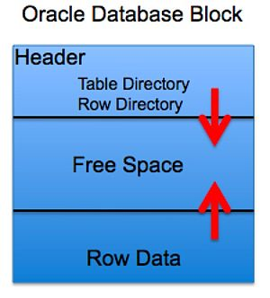 Oracle Database Block.jpg