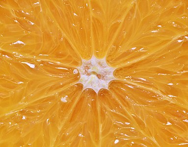 Orange citrus fruit pulp juicy 453452.jpg