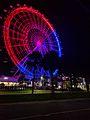 Orlando Eye on Election Night (30833481646).jpg