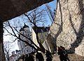 Orthodox Cathedral on Toompea (7954489268).jpg