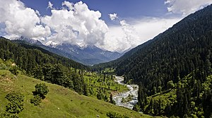 View of the Pahalgam Valley