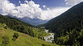 English: View of the Pahalgam Valley