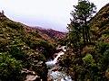 Paisagem do Parque Nacional da Peneda - Gerês 07.jpg