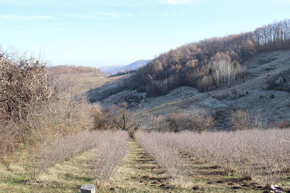 Paklje - opština Valjevo - zapadna Srbija - panorama 1