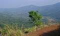 Pakshipathalam - views from the way to Pakshipathalam from Thirunelli (211).jpg
