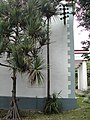 Pandanus-Jardin-État-Réunion.JPG