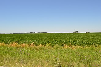 Papineau Township, Iroquois County, Illinois - Fields west of Beaverville