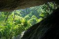 Parque Nacional de Itatiaia-6.jpg