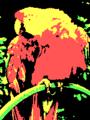 Parrot CGA 4-2-hi palette.png
