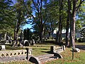 Part of Beechwood Cemetery.jpg