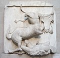 Parthenon sculpture depicting a centaur and a Lapith.jpg