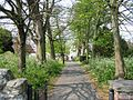 Path through the churchyard, St Clement's Church, Sandwich - geograph.org.uk - 416109.jpg