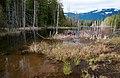 Patterson Lake Vancouver Island.jpg