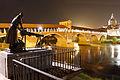Pavia - Ponte Coperto e Lavandaia.JPG