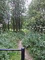 Pendeford Wood Nature Reserve - geograph.org.uk - 515339.jpg