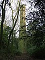 Pentlow Tower - geograph.org.uk - 1120039.jpg