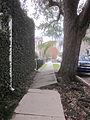 Perrier St Sidewalk NOLA.jpg