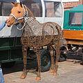 Pferd auf Juist 2010 PD 07.JPG