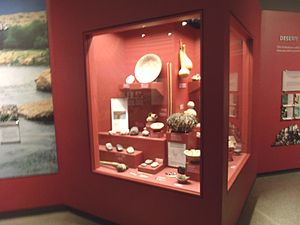 Pueblo Grande Ruin and Irrigation Sites - Image: Phoenix Pueblo Grande Ruin Museum artifacts display