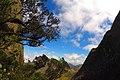 Pico das Agulhas Negras - panoramio (2).jpg