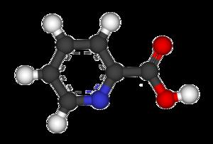 Picolinic acid - Image: Picolinic acid 3D balls