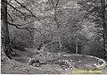 Pietrastornina (AV), 1963, località Acqua delle Vene la sorgente..jpg