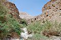 PikiWiki Israel 38857 Geography of Israel.JPG