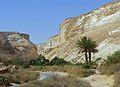 PikiWiki Israel 38869 Geography of Israel.JPG