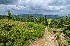 Pilsko - szlak z Hali Miziowej.jpg