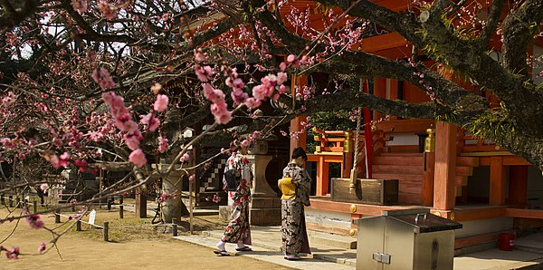 Two women praying in front of a Japanese Shinto shrine. Plum trees Kitano Tenmangu.jpg