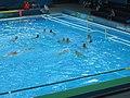 Polo match - 2012 Olympics.jpg