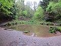 Ponds full - Paradise Bottom - May 2012 - panoramio.jpg
