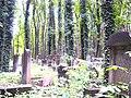 Powązki Jewish Cemetery in Warsaw (7).jpg