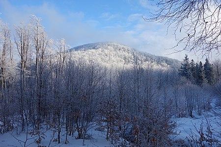 Praporec (Slanské vrchy) v zime