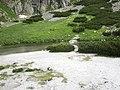 Pri vodopáde Skok - panoramio.jpg