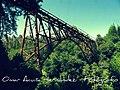 Puente Quino.jpg