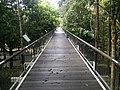 Putrajaya Botanical Garden in Malaysia 19.jpg