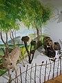 Quba Tarix Diyarşünaslıq - Muzeyi 4.jpg