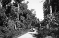 Queensland State Archives 1263 Gillies Highway c 1935.png