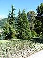 Queenstown Gardens, New Zealand (16).JPG