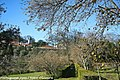 Quinta do Conde de Anadia - Mangualde - Portugal (8302887363).jpg