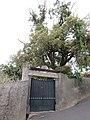 Quinta e Capela do Faial, Funchal, Madeira - IMG 8737.jpg